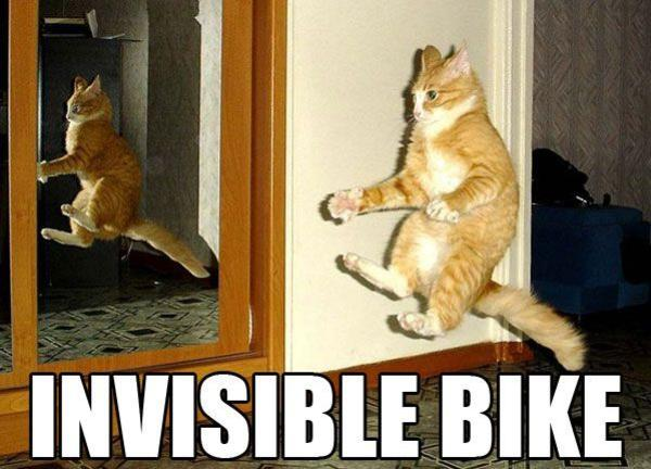 Cat-Riding-Invisible-Bike