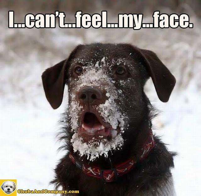 It's ca ca ca-cold outside!