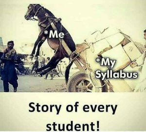 study-sllybus